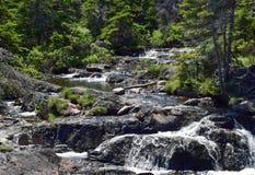 Vattenfall Torbay NL för rörelseflodkaskad Royaltyfri Bild