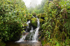 Vattenfall Uganda arkivbilder