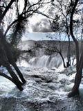 Vattenfall vid träden Arkivfoto