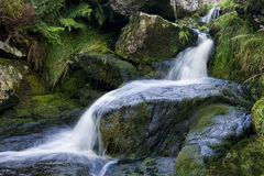 vattenfall wicklow Arkivbilder