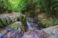 Vattenfallen i skog Royaltyfri Bild