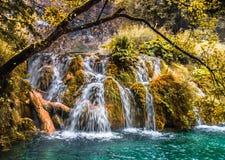 Vattenfallet flödar in i sjön i höstskogen Arkivfoto