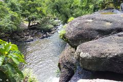 Vattenfallet i den stora skogen ?r lugna royaltyfri foto