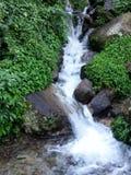 Vattenfallet i skogen av Nepal Fotografering för Bildbyråer