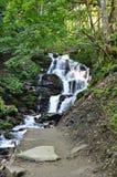 Vattenfallet i vaggar i skogen royaltyfria bilder