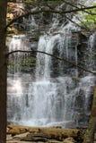 Vattenfallet och loggar Royaltyfria Bilder
