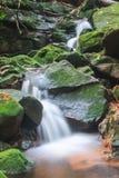 Vattenfallet och vaggar dolt med mossa Arkivfoto
