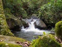 Vattenfallet som flödar vaggar igenom fotografering för bildbyråer