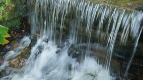 Vattenfallfärgstänk på botaniska trädgården av Rio de Janeiro lager videofilmer