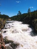 Vattenfallflod i den Yellowstone nationalparken Fotografering för Bildbyråer