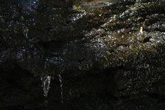 Vattenfallliten droppe fotografering för bildbyråer
