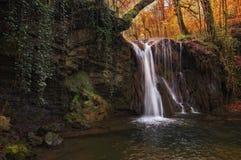 Vattenfallliten vik i skog Royaltyfri Bild
