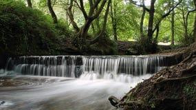 vattenfallskogsmark royaltyfri bild