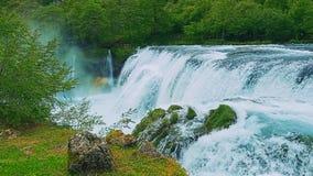 VattenfallStrbacki buk arkivfilmer
