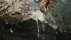 Vattenflöden från slutet för smältningsglaciären upp, våren tappar ultrarapid stock video