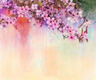 Vattenfärg som målar körsbärsröda blomningar, japansk körsbär, rosa Sakura Royaltyfri Fotografi