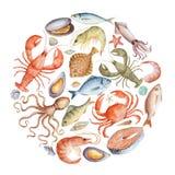 Vattenfärguppsättning av skaldjur Fotografering för Bildbyråer