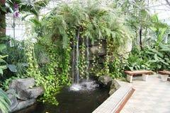 Vattenfunktion i växthus Royaltyfri Foto
