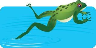 Vattengroda stock illustrationer