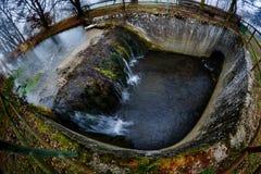 Vattenhål Arkivfoto