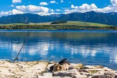 Vattenhandfat Liptovska Mara, Slovakien Fotografering för Bildbyråer