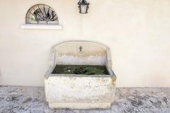 Vattenhandfat med liliy Arkivfoto