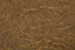 Vattenilsken blick Royaltyfria Foton