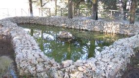 Vattenkällor Royaltyfri Fotografi
