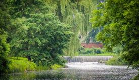 Vattenkörningar till och med en frodig gräsplan parkerar fotografering för bildbyråer