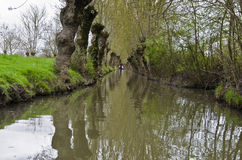 Vattenkanal i Marais Poitevin royaltyfria bilder