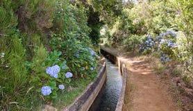 Vattenkanal och vandringsled som omges av blommor Arkivbild