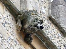 Vattenkastare överst av tornet av Sts Michael kyrka av England, Chenies royaltyfria bilder