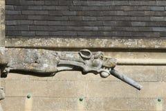 Vattenkastare eller groteskar på en gammal kyrka royaltyfri foto