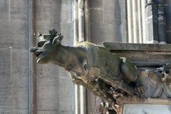Vattenkastare på den Cologne domkyrkan, Tyskland Arkivbilder