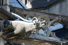 Vattenkastare på den Cologne domkyrkan, Tyskland Royaltyfri Bild