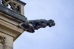 Vattenkastare på St Vitus Cathedral Arkivfoto