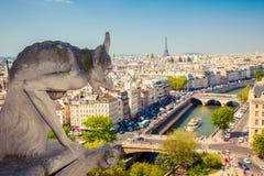 Vattenkastare på Notre Dame Cathedral Royaltyfria Foton