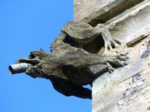 Vattenkastare ?verst av tornet av Sts Michael kyrka av England, Chenies royaltyfri bild