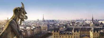Vattenkastarestaty och panoramautsikt av Paris från Notre Dame Cathedral arkivfoton