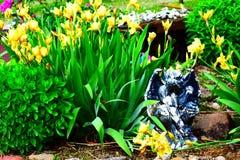 Vattenkastareträdgård royaltyfri foto