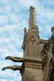 Vattenkastarna av Notre Dame Cathedral, Paris Royaltyfri Fotografi