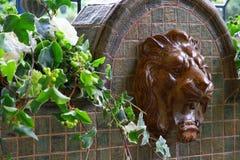 Vattenkran av lejonet Royaltyfri Foto