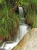 Vattenlandskap Arkivbild