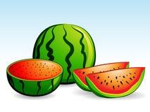 vattenmelon royaltyfri illustrationer