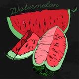 Vattenmelon 07 A royaltyfri illustrationer