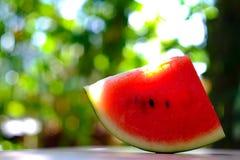vattenmelon royaltyfria bilder