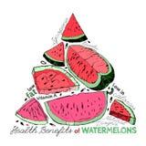 Vattenmelon drar nytta 02 A royaltyfri illustrationer