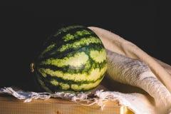 Vattenmelon i studioskott arkivfoto