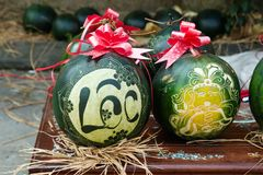 Vattenmelon med festlig gravyr på helgdagsafton av det vietnamesiska nya året Inskriften översätts - klargöra Ton Vietnam royaltyfria bilder