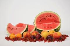 Vattenmelon och frukt Fotografering för Bildbyråer